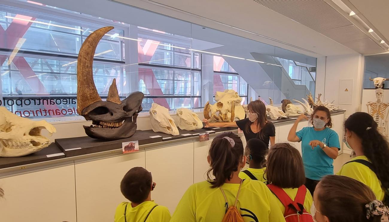 Taller con huesos de animales, niños del campamentos, guía e intérprete de lengua de signos
